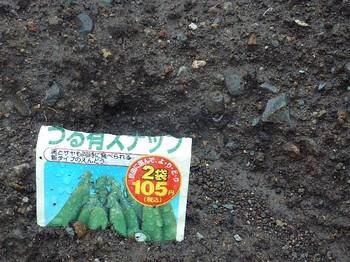 2010.10.30 つる有スナップ.jpg