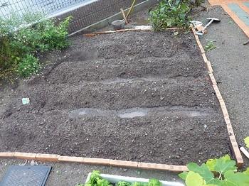 2010.10.30 第二家庭菜園.jpg