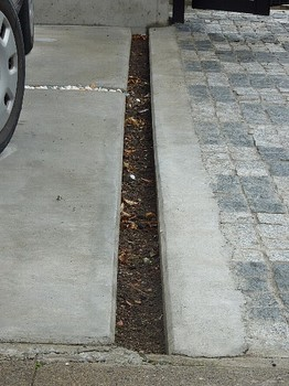 駐車場(目地5).jpg