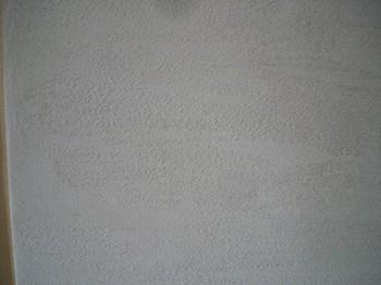 リビング(珪藻土)2.jpg