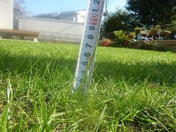 2010.11.06 芝刈り前2.jpg